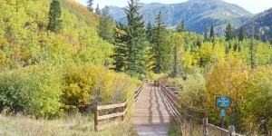 Marcher dans la nature, la meilleure des cures !