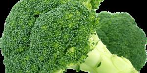 Les bienfaits de l'huile de brocoli