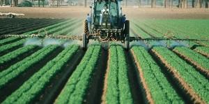 Pesticides : augmentation de 25% de leur utilisation