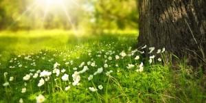 Soleil et santé