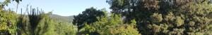 Un été serein grâce à la Nature