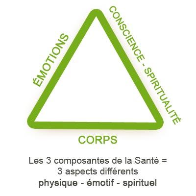 triangle des composants de la santé